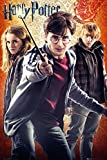Harry Potter Maxiposter, Holz, Trio, 61 x 91,5 cm