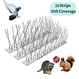 Bird Spikes for Pigeons Small Birds,Stainless Steel Bird Spikes -No More Bird Nests & Poop (30 Feet Coverage)