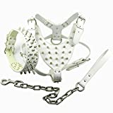 Dogs Kingdom Spiked Studded Leather Dog Pet Collar Harness Leash 3pcs Set Walking Pitbull Boxer White L