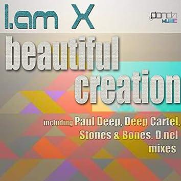 Beautiful Creation
