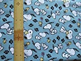 Snoopy Peanuts:Snoopy and Woodstock 45cmx54cm:スヌーピー ウッドストック USAコットン