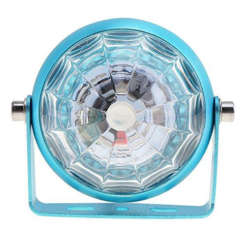 Benwei 12 V General LED Lumière clignotante Châssis spot décoratifs arrière Accessoires pour moto/voiture – Bleu