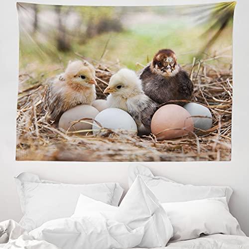 ABAKUHAUS Chicks Wandteppich & Tagesdecke, Kleine Hühner in Hay Eier, aus Weiches Mikrofaser Stoff Wand Dekoration Für Schlafzimmer, 150 x 110 cm, Mehrfarbig