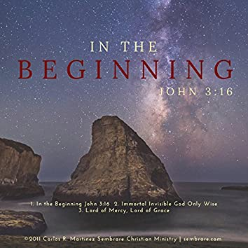 In the Beginning John 3:16