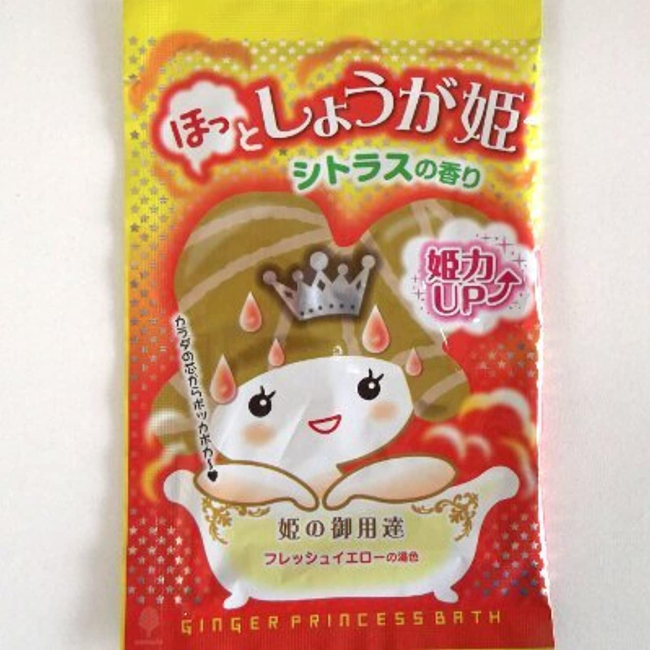 ぴかぴか尊敬するさわやか紀陽除虫菊 ほっとしょうが姫 シトラスの香り【まとめ買い12個セット】 N-8401