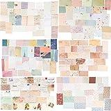 360Hojas Papeles Scrapbooking Tarjetas Etiquetas Flores Plantas Manualidades...
