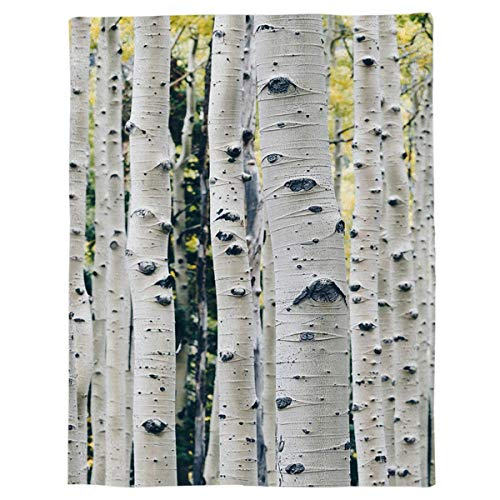 Flannel Throw Blanket Birch Tree Branches Lightweight Fleece Bed Blanket Nature Forest Soft Warm Blanket All Season Sofa/Couch/Chair for Child Adults