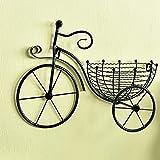 RRFZ Macetero Colgante para Plantas, Soportes para Flores de Pared, Estante de exhibición en Forma de Bicicleta de Hierro, Canasta de Flores pequeña Colgante para Sala de Estar, balcón,