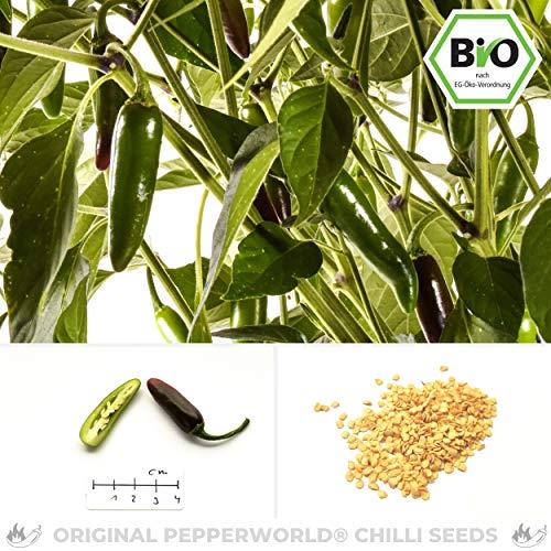 Pepperworld Serrano Bio Chili-Saatgut, 10 Korn, Chili-Schote zum Anpflanzen, tolles Aroma