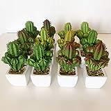 Wellhome Cactus cardon Surtidos Artificiales con Maceta de Ceramica, Pack 12 ST022, 17x8x8 cms