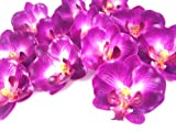 (100) Small Purple Phalaenopsis Orchid Silk Flower Heads - 2' - Artificial Flowers Heads Fabric Floral Supplies Wholesale Lot for Wedding Flowers Accessories Make Bridal Hair Clips Headbands Dress