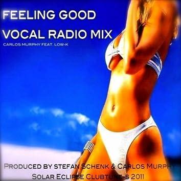 Feeling Good Vocal Radio Mix