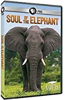 Nature: Soul of the Elephant [DVD] [Import]