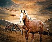 初心者向け刺繍キットのフルレンジ スタンプクロスステッチキット 草原の馬 11CT クロスステッチパターン 針先キット 工芸品 針仕事 ホリデーギフト - 16x20インチ