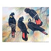 QMGLBG 5Dダイヤモンド塗装 黒いオウムの鳥のダイヤモンドの絵画十字のステッチの水晶芸術の壁の装飾のギフト30*40cm
