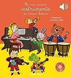Els meus primers instruments de música clàssica: Il·lustrat per Séverine Cordier (Llibres musicals)