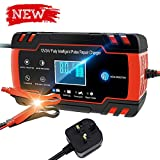 Directtyteam Car Battery Charger Lntelligent 8A 12V/4A 24V car battery charger Charges, Maintains