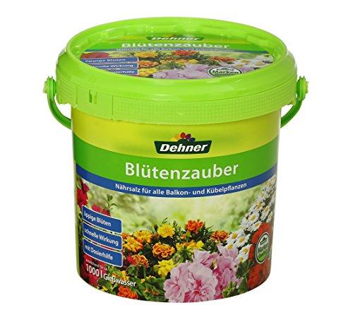 Dehner -   Blütenzauber