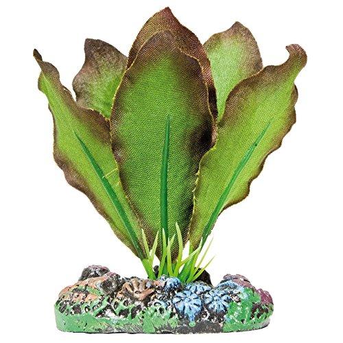 ICA AP1132 Anubias de Aquatic Pflanzen Seide