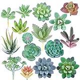 Mini piante grasse artificiali non in vaso: finte piante grasse sceglie realistiche steli di cactus in plastica per terrario, piccole composizioni assortite, mini piante grasse artificiali