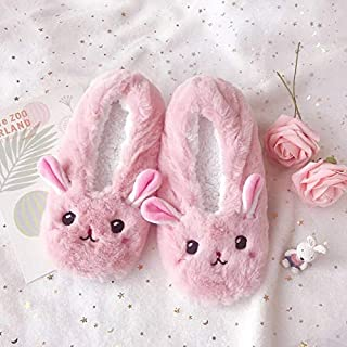 DZUOY Indoor bag slippers bottom non-slip particle home slippers in the form of cotton of cold measures slippers 1 pair of cartoon cute animal soft bottom (Color : Clear, Shoe Size : 6)