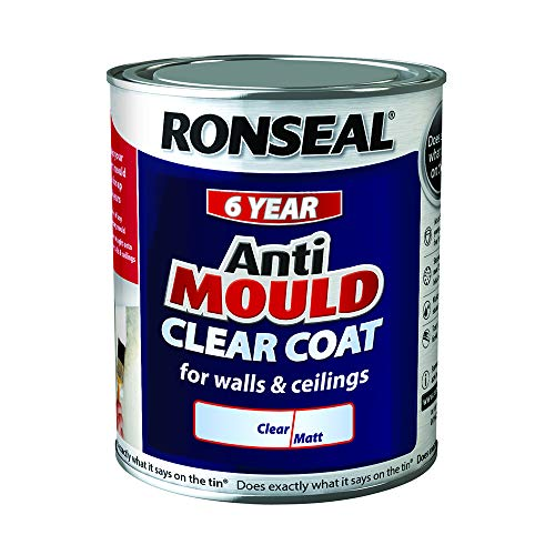 Ronseal 37593 Anti-Mould Paint, Clear, 750ml