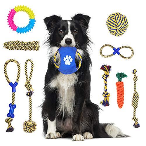 Nobleza - Hundespielzeug Seil Spielzeug Dauerhaftes Hundespielzeug für Welpen,Knoten Baumwollspielzeug, Hundespielzeug Geschenk-Set mit Box,10er Packung