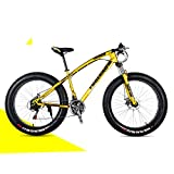 Nerioya Adult Mountain Bike, Front and Rear Double Disc Brakes, Shock-Absorbing Fat Tire Beach Shift Bike,E,24 inch 21 Speed