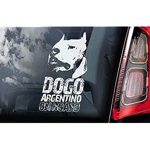 CELYCASY Dogo Argentino on Board - Car Window Sticker - Argentine Mastiff Sign Gift Decal - V02 46
