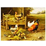 Pintura por Números DIY Kit Animal-Pollo De Pintura Acrílica para Niños Y Adultos Principiantes Decoración del Hogar Lienzos 40X50Cm(Sin Marco)
