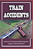 Train Accidents: Inadvertent And Intentional Mismanagement Leading To Railroad Collisions: Railroad Industry Willing To Put Complacency Ahead Of Safety (English Edition)