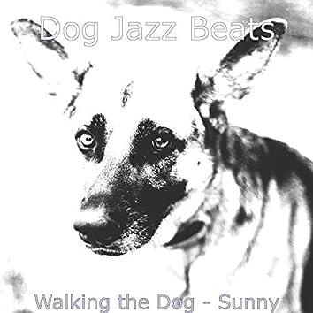Walking the Dog - Sunny