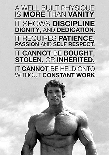 Arnold Schwarzenegger Motivation Gym Poster Art Print No Frame 24 X 36 product image