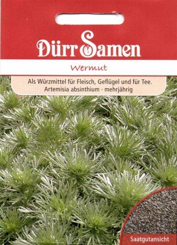 Wermut, Artemisia absinthium, ca. 800 Samen