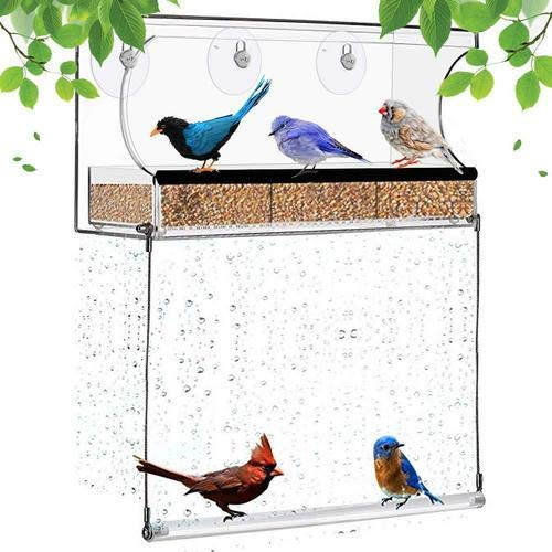 Venster, vogelhuisje, tuin buiten transparant acryl kolibrihuisje, weerbestendig design, vierkante vogelkooi veilig, krasbestendig en gemakkelijk te reinigen, geweldig voor nauwkeurige observatie.