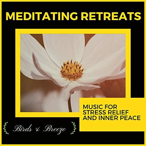 Spiritual Sound Clubb, Mystical Guide, Liquid Ambiance, Ambient 11, Sanct Devotional Club, Serenity Calls, Yogsutra Relaxation Co, Pause & Play & Kaustav Majumder