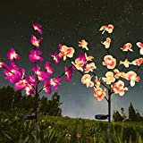 HeyMate Solar Garden Lights Outdoor Decorative- 2 Pack Solar...