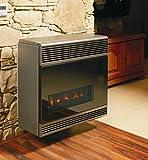 Calentador de gas con salida de 3.9 kW con gases de escape. Convector Beta 4 Comfort Electronic 02