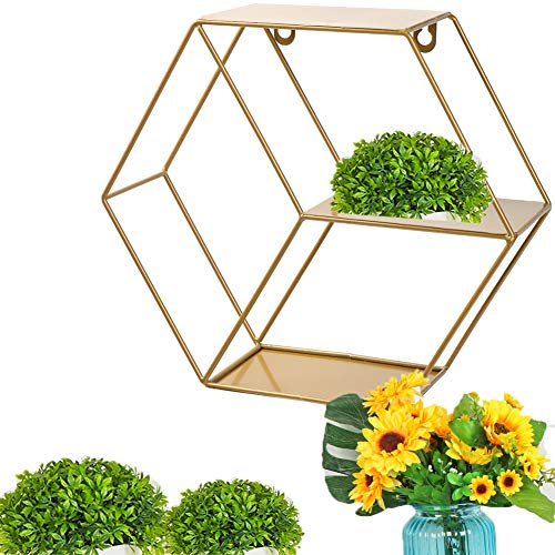 werr Estante de almacenamiento para decoración del hogar, estantería de metal hexagonal redondo para colgar estante de almacenamiento de exhibición de estante de pared (Hexagon Gold)