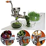 Wheatgrass Stainless Steel Manual juicer Hand Vegetable Juice Extractor Aloe Vera Cabbage Celery Pine Needles Fruit juicer