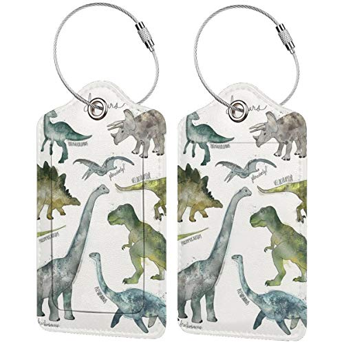 Etiquetas de equipaje de piel con diseño de dinosaurios para maletas, bolsa de viaje con funda de privacidad (2 unidades)