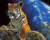 shuodade Colorear Figuras de Color sin Marco Imágenes de Pared de Tigre para Tejido Piso de Pared Pared de Pintura DIY Unito único Regalo de 40x50 cm