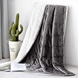 Topblan Sherpa Fleece Weighted Blanket 15lbs, Double Sided with Fuzzy Fleece and Shaggy Sherpa to Help with Better Sleep, 48x72 inches, Grey & White