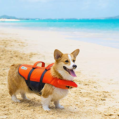 Medium Dog Life Jacket, Outward Hound Granby Splash