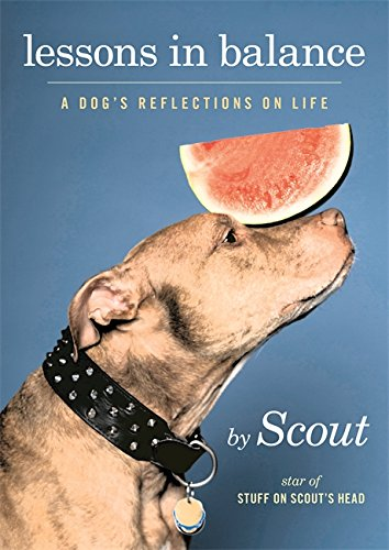 Lessons in Balance: A Dog's Reflections on Life