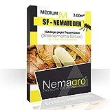 Nemagro® SF-Nematoden M 1.5mio - bis 5 Pflanzen - Für eine einfache Anwendung zu Hause!