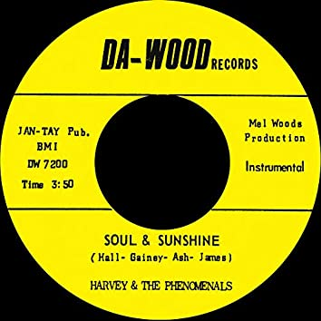 What Can I Do (To Prove My Love Is Real) b/w Soul & Sunshine