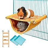 Hamster Hamster double couche, cochon d'Inde, accessoires avec échelle en...