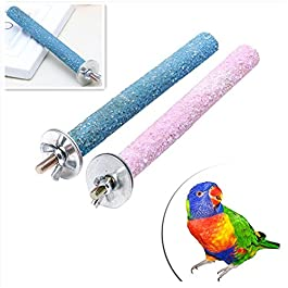 display08 Pet Parrot Budgie Chew Bite Paw Grinding Rod Toy Bird Cage Play Stand Perches