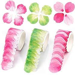 Espuma de formación de flor Fleurs florece Colección Paquete de 10 Hojas 1 de cada color